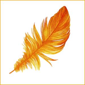 Awareness-Kampagne Goldene Feder